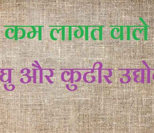 laghu and kutir udyog in hindi