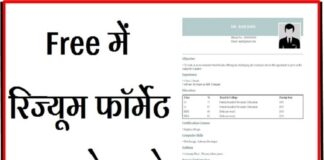 Indian Resume Format in Hindi