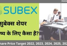 Subex Share Price Target 2022, 2023, 2024, 2025, 2030 - सुबेक्स शेयर प्राइस टारगेट